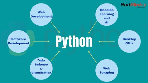 Python Developer Roadmap 2021